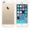 Apple iPhone 5S 16Gb (A1457) Gold (�������)